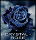 CRYSTAL-ROSE